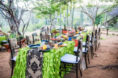 Colorful long table breakfast setup outside amongst trees and cactus at the Arikok National park